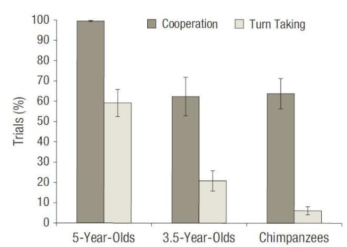 chart showing children and chimps ability to co-operate