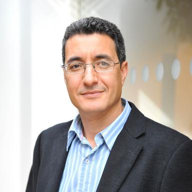 Kamel Mellahi